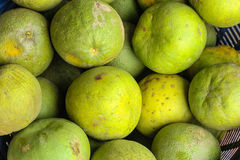 Pomelo fruit Stock Image