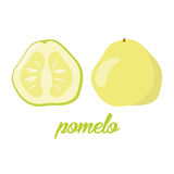 Pomelo fruits poster in cartoon style depicting whole and half of fresh juicy citruses  on white background Royalty Free Stock Photo