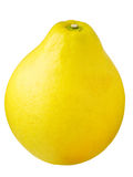 pomelo grapefruit Stock Image