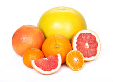 Pomelo, grapefruit, orange, tangerine Royalty Free Stock Photography