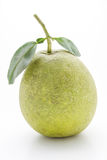 Pomelo Royalty Free Stock Images