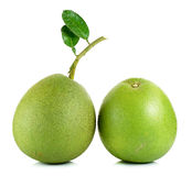 Pomelo isolated on the white background Royalty Free Stock Photo