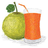 Pomelo juice Royalty Free Stock Images