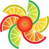 Pomelo, limón, cal y rebanadas anaranjadas Imagenes de archivo