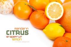 Pomelo, mandarina, limón, anaranjado Foto de archivo