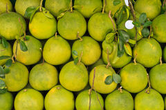 Pomelo in the market Royalty Free Stock Photos