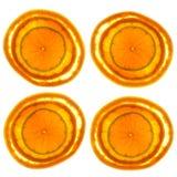 Pomelo, naranja y cal rebanados Imagen de archivo libre de regalías