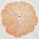 Pomelo o pomelo chino imagen de archivo libre de regalías