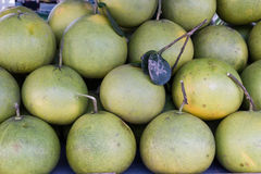 Pomelo or pummelo. For sele in market's or grocery's product Royalty Free Stock Images