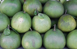 Pomelo or pummelo Stock Image