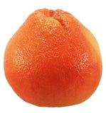 Pomelo rojo. Fotos de archivo
