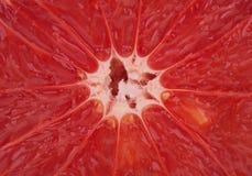Pomelo rojo fresco, fondo Foto de archivo libre de regalías