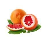 Pomelo rojo maduro fresco con las hojas verdes El rojo cortó la fruta cítrica aislada Fotos de archivo
