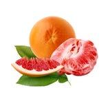 Pomelo rojo maduro fresco con las hojas verdes El rojo cortó la fruta cítrica aislada Imagen de archivo libre de regalías