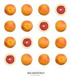 Pomelo rojo o modelo anaranjado Imágenes de archivo libres de regalías