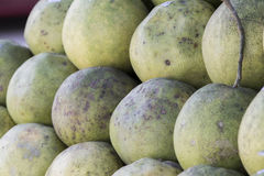 Pomelo on sell. In the shop Stock Images