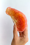 Pomelo Slice in Hand. A peeled pomelo slice held in the hand of a young woman, seeds visible Royalty Free Stock Photo