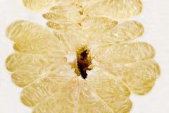 Pomelo slice isolated on the white background royalty free stock image