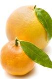 Pomelo y mandarina Fotos de archivo libres de regalías