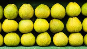 Pomelos organized into layers Stock Images