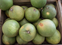 Pomelos in wood box Royalty Free Stock Photos