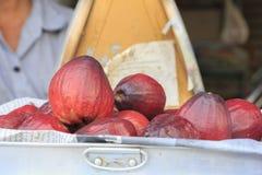 Pomerac ή η της Μαλαισίας Apple ή μήλο βουνών στην πώληση στην αγορά Στοκ εικόνα με δικαίωμα ελεύθερης χρήσης