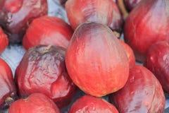 Pomerac ή η της Μαλαισίας Apple ή μήλο βουνών στην πώληση στην αγορά Στοκ φωτογραφία με δικαίωμα ελεύθερης χρήσης