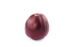 Pomerac malajiska Apple (Syzygiummalaccense (L ) Merrill & Perry) Fotografering för Bildbyråer