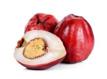 Pomerac, malaysischer Apfel, lokalisiert auf weißem Hintergrund Lizenzfreies Stockbild