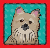 Pomeranian Cartoon Stock Photography