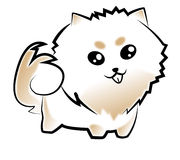 Pomeranian. Cartoon white colour so cute for clipart or website or other Stock Photos