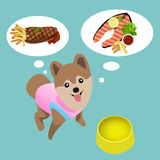 Pomeranian dog with empty bowl want to eat steak. Royalty Free Stock Photos