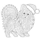 Pomeranian hund i jultomtenhatt Royaltyfri Foto