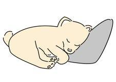 Pomeranian Schlaf des Handabgehobenen betrages Hundeam Kissen mit weißem Hintergrund Lizenzfreie Stockbilder