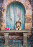 Pomeranian Welpe stockfoto