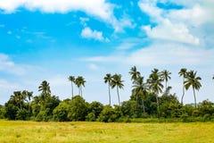 Pomeriggio di Goan Fotografie Stock Libere da Diritti