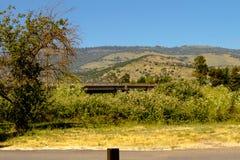 Pomeriggio Hillside fotografie stock libere da diritti