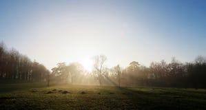 Pomeriggio nebbioso fotografia stock