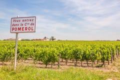 Pomerol vingård Royaltyfri Bild