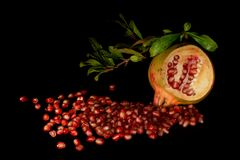Pomgranate interior spreading in the dark stock image