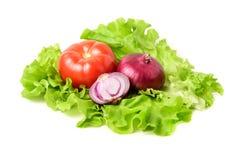 Pomidor, świeża sałata i czerwona cebula na białym tle, Fotografia Stock