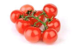 pomidor Obrazy Stock
