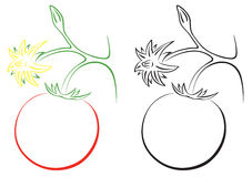 pomidor royalty ilustracja
