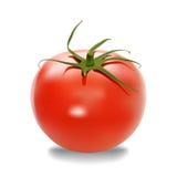 Pomidor Fotografia Royalty Free