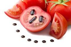 pomidor czerwony Obrazy Stock