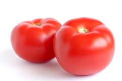 pomidor czerwony Fotografia Royalty Free