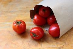 pomidor czerwony Obraz Stock