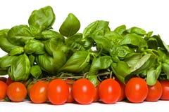 Pomidor i basil zdjęcie royalty free