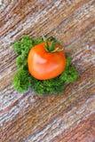 Pomidor i ziele zdjęcia royalty free