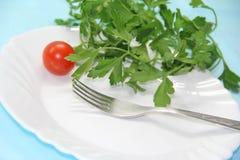 Pomidor i ziele na talerzu Zdjęcie Stock